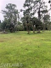 2105 PHILLIPS RD, Fort Denaud, FL 33935 - Photo 2