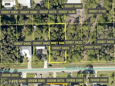 3710 TANGELO DR, OTHER, FL 33956 - Photo 1