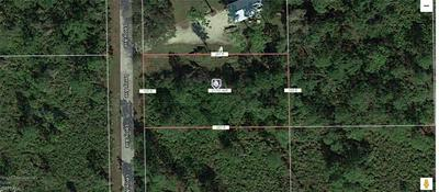 2112 LEROY AVE, ALVA, FL 33920 - Photo 2