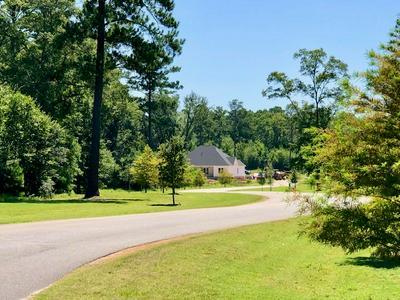 LOT 37 HIDDEN COVE LANE, Leesburg, GA 31763 - Photo 2