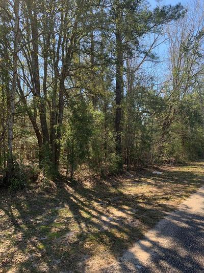 000 WILKIE MOSLEY RD, Blakely, GA 39823 - Photo 1