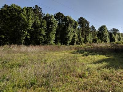 0 CRAWFORD, Colquitt, GA 39837 - Photo 1