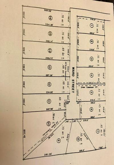 LOT 11 WARD STREET SE, WHIGHAM, GA 39897 - Photo 1