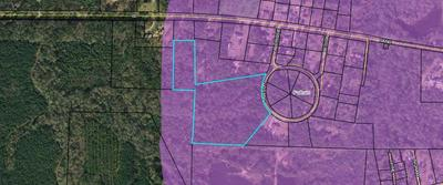 14.45 AC RAWSON CIRCLE, Pelham, GA 31779 - Photo 1