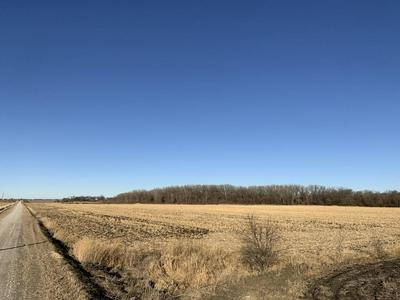 36.7 ACRES, CARSON, IA 51525 - Photo 2