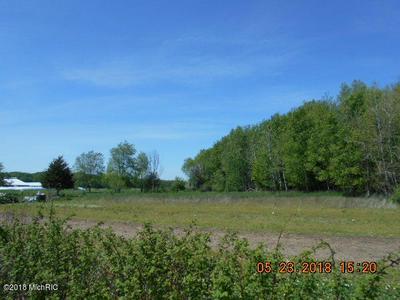 W SUGAR GROVE ROAD, Scottville, MI 49454 - Photo 1