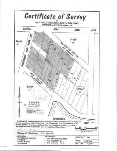 1 W CENTRAL PARK BOULEVARD, Baldwin, MI 49304 - Photo 1