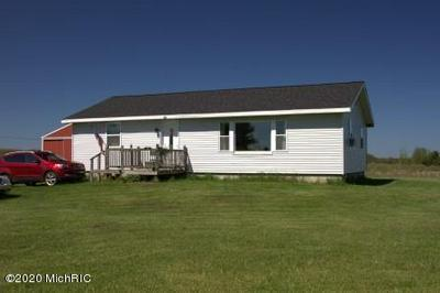 6669 N CUSTER RD, Free Soil, MI 49411 - Photo 2