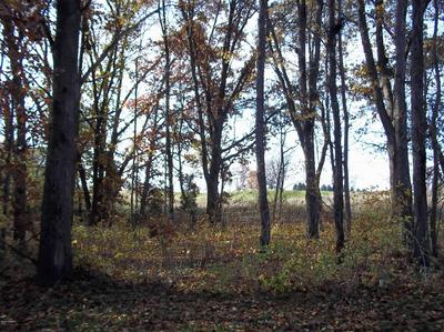 6 ISLAND IN THE HILLS LOT, Centreville, MI 49032 - Photo 2