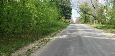 PARCEL A HARWOOD ROAD, Ionia, MI 48846 - Photo 2