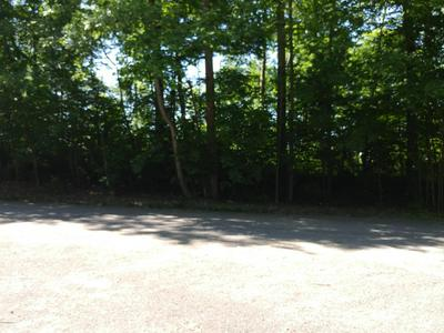 LOT 14 ACORN DRIVE, Lawton, MI 49065 - Photo 1