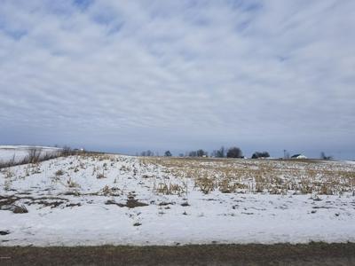 S SCHWASS ROAD, Scottville, MI 49454 - Photo 1