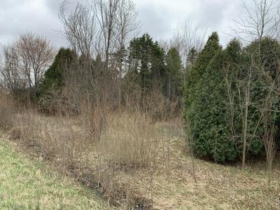 1900 PLANTATION ROW, Baroda, MI 49101 - Photo 1