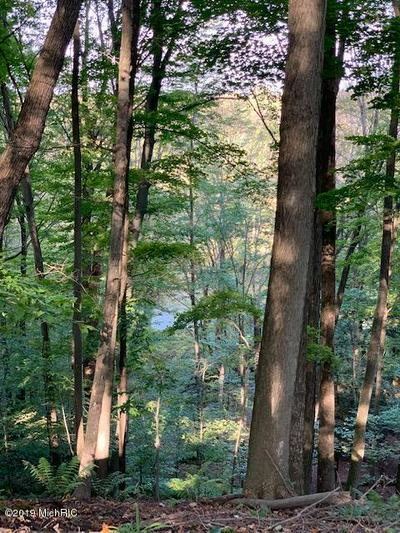 RIVER BLUFFS LOT 2, Hersey, MI 49639 - Photo 2