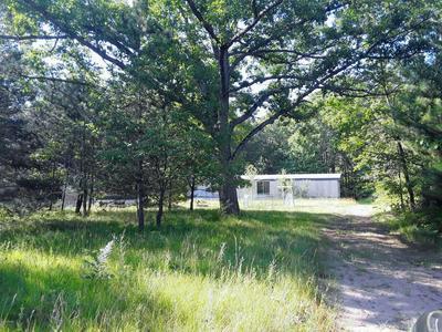 4813 E BAROTHY RD, Custer, MI 49405 - Photo 1