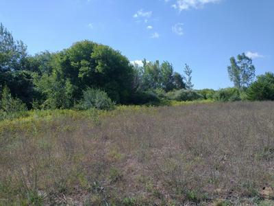 V/L OLD GARDEN, Fennville, MI 49408 - Photo 2