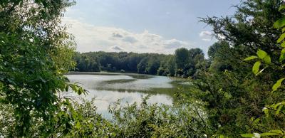 7192 MORRISON LAKE RD, Saranac, MI 48881 - Photo 1