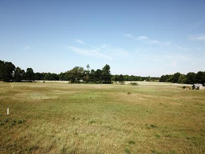 LOT K MEADOW VIEW LANE, Hart, MI 49420 - Photo 1