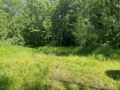 Z VACANT LAND BARBER, Hastings, MI 49058 - Photo 2