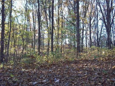 5 ISLAND IN THE HILLS LOT, Centreville, MI 49032 - Photo 2