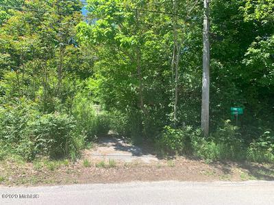 PINE STREET, Shelby, MI 49455 - Photo 1