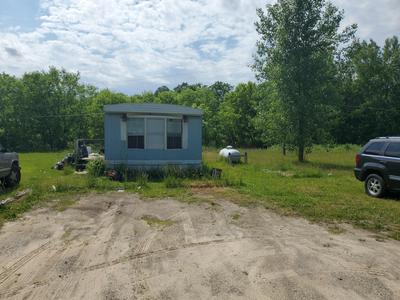 4734 MORRISON LAKE RD, Saranac, MI 48881 - Photo 2