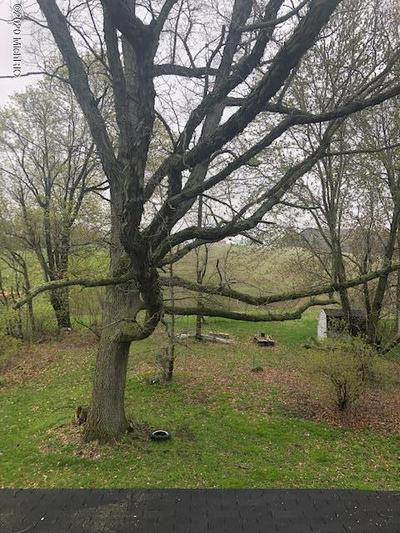 11437 S BRINTON RD, Blanchard, MI 49310 - Photo 2
