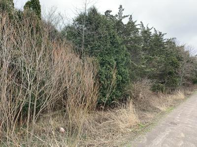 1900 PLANTATION ROW, Baroda, MI 49101 - Photo 2