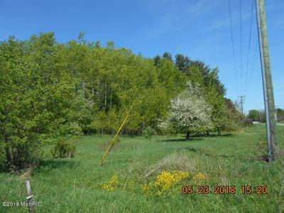 W SUGAR GROVE ROAD, Scottville, MI 49454 - Photo 2