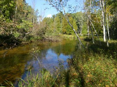 7501 MADISON AVENUE, Canadian Lakes, MI 49346 - Photo 1