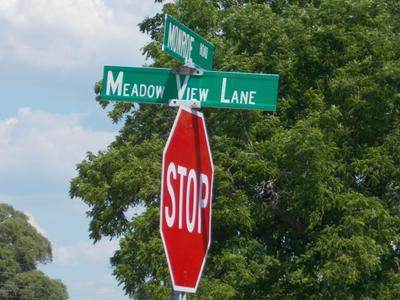 V/L MEADOW VIEW LN LOT D, Hart, MI 49420 - Photo 2