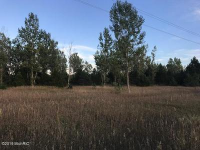VL 13 MILE ROAD, Copemish, MI 49625 - Photo 1