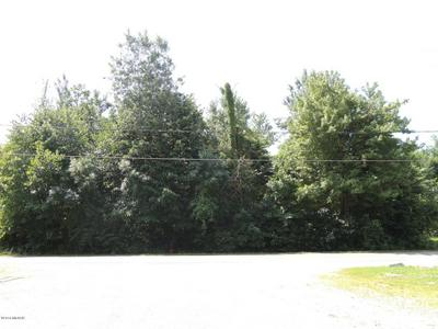 LOT # 5 THIRD STREET, Fennville, MI 49408 - Photo 1