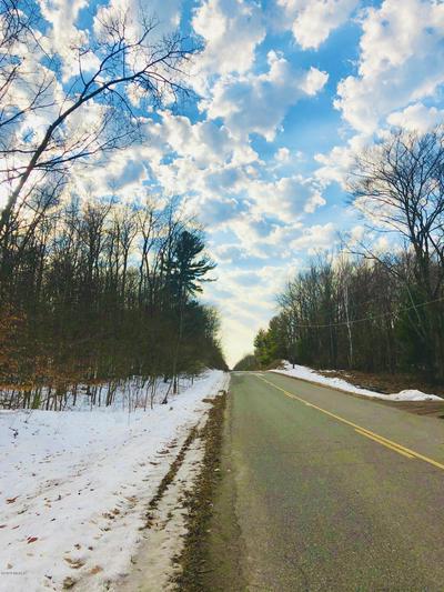 0 W DUCK ROAD, Mears, MI 49436 - Photo 1