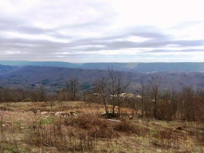 LOT #7 OVERLOOK LN (THE OVERLOOK), Rocky Gap, VA 24366 - Photo 2