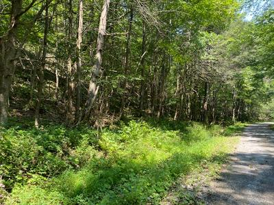 67 AC CROCKETTS COVE RD, Wytheville, VA 24382 - Photo 2