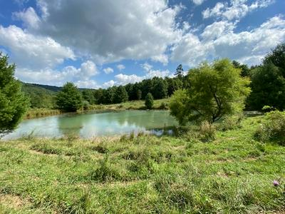 324 ACRE CROCKETTS COVE RD, Wytheville, VA 24382 - Photo 2