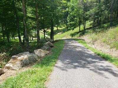 TBD PARK PLACE DR, Independence, VA 24348 - Photo 2