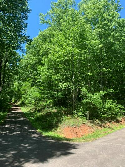 110 POINT LOOKOUT LN, Independence, VA 24348 - Photo 2