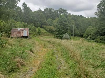1007 TOBLER RD, Rural Retreat, VA 24368 - Photo 2