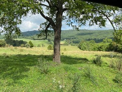 324 ACRE CROCKETTS COVE RD, Wytheville, VA 24382 - Photo 1