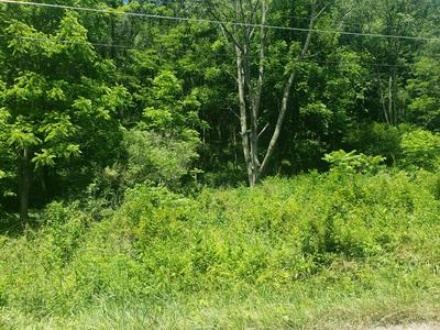 TBD WHITLEY BRANCH ROAD, North Tazewell, VA 24630 - Photo 1