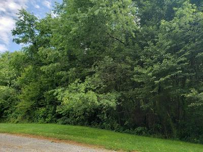TBD TBD, Rural Retreat, VA 24368 - Photo 1