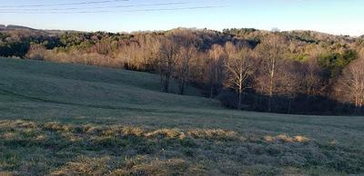 TBD COUNTRY RD., Austinville, VA 24312 - Photo 1