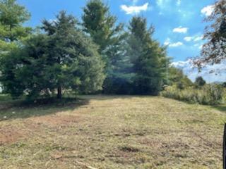 TBD LEAD MINE RD, Austinville, VA 24312 - Photo 1