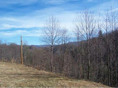 588 TAFT EGGERS LN, Mountain City, TN 37691 - Photo 2