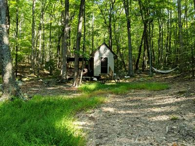 47 ACRES INDIAN MEADOW LN, Wytheville, VA 24382 - Photo 1