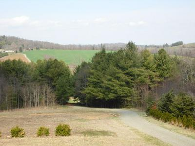 10004 GLADE VALLEY RD, Ennice, NC 28623 - Photo 2