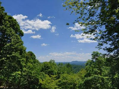 LOT 4&5 FOREST TRL, Independence, VA 24348 - Photo 1