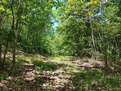 LOT 4&5 FOREST TRL, Independence, VA 24348 - Photo 2